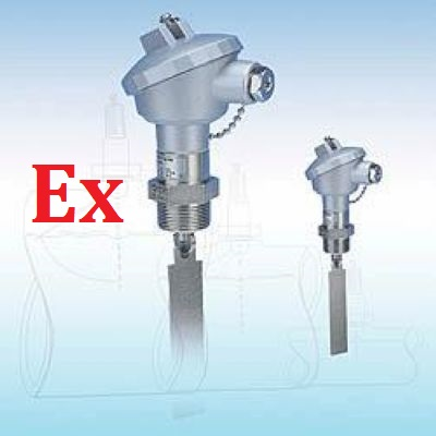 Two-way Bidirectional Paddle Flow Switches